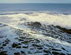 en la ola 81x116